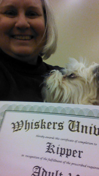2015-02-16-kipper-graduated-from-basic-obedience-class-02