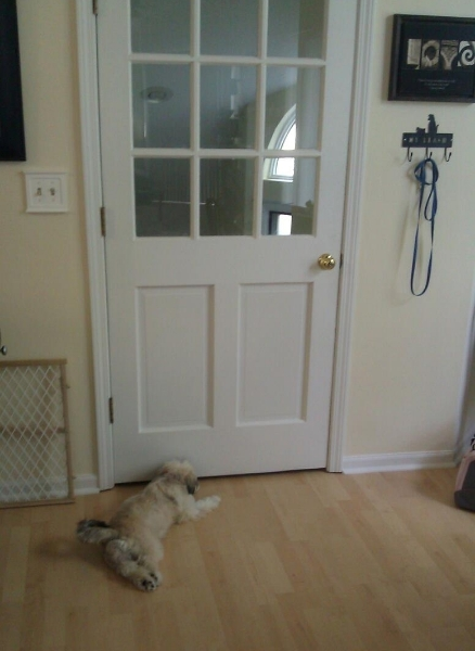2012-04-11-diesel-waiting-for-daddy-01