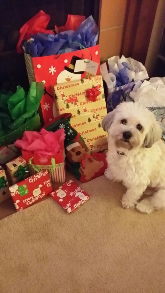2013-12-20-diesel-waiting-to-open-presents