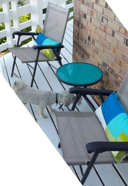 2014-06-14-diesel-checking-out-the-new-patio-furniture