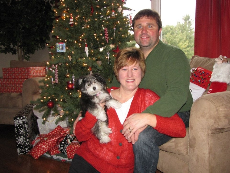 2012-12-25-pixie-on-christmas-day-14
