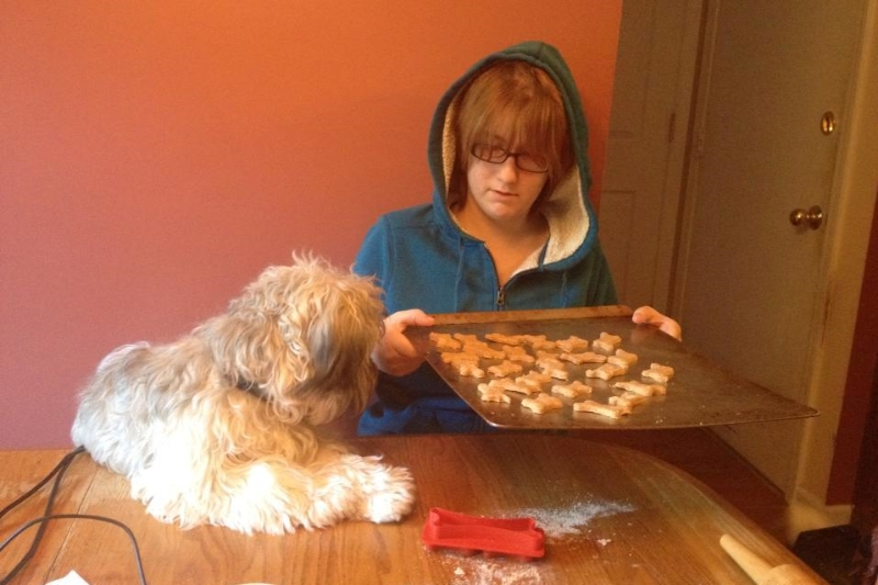 2013-10-14-fergus-waiting-patiently-for-treats